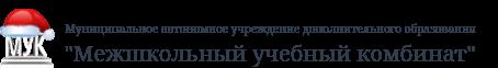 Муниципальное автономное учреждение дополнительного образования